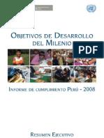 IODM-Peru2008[1]