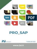 Manuale Pro SAP.pdf