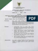 SKKNI 2009-217.pdf