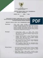 SKKNI 2009-216.pdf
