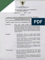 SKKNI 2009-244.pdf