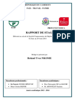essai_de_rapport_de_stage_scdp.pdf