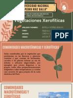 Vegetaciones Xerofíticas.pdf