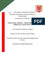 LINEA DE TIEMPO - PROCEDIMIENTO ESPECIAL