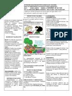 33_c-sociales--2-periodo-grado-5 GUIA OCTUBRE 5