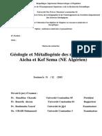 X6976.pdf