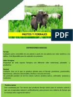 PresentaciónCLASE N°1. PASTOS Y FORRAJES