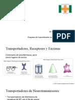 Transportadores, receptores y enzimas. Con apunte