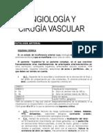 Cirugia%20Vascular