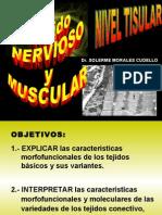 tema_tejido_nervioso_y_muscular [Autoguardado]