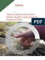 Wairau Creek Report FINAL Sept 2020