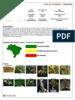 GUIA - PIRACANTA.pdf