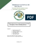 Té de Eucalipto y Matico.pdf