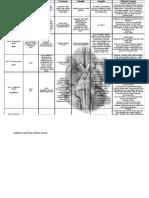 Cranial Nerve Chart