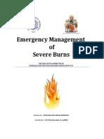 24699_EMSB Burns bhs Ing _ Indo(secured)-1 copy.pdf