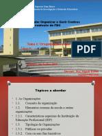 tema 1 caracteristicas das organizaçoes.pptx