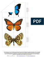 butterflies_moths_puzzle