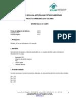 Formato_informe_salida_campo_CLC_IDEAM.pdf