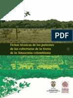 Patrones coberturas amazonas 2002.pdf