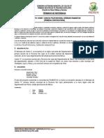TDR CONST. CANCHA ´POLIFUNCIONAL RAMADITAS