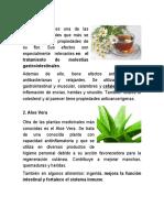 PLANTAS MEDICINALES MARLON 2