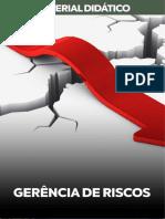 GERÊNCIA-DE-RISCOS-2