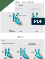 aula-8-biofisica-da-circulacao-vet-2019-p2