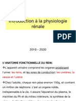 1-introduction Physiologie urinaire