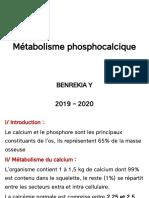 8-Métabolisme phosphocalcique