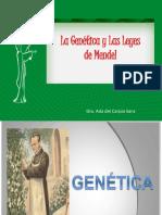 citologia fase 3.pdf