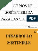 CLASE DE PRINCIPIOS DE SOSTENIBILIDAD