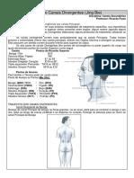 Resumo Canais Divergentes (p.turma).pdf