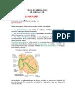 clase 1 dr sotoELECTROCARDIOGRAMA