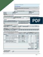 Formato N°08-A Registros en la Fase de Ejecución