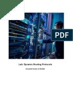Lab 3 - Dynamic Routing Protocols.docx