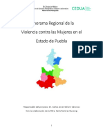 16__Panorama_Regional_Puebla_24-08-17