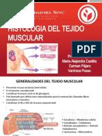 histologia del tejido muscular