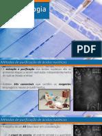 Introdução+às+Técnicas+de+Biologia+Molecular.pdf