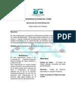 EXPERIMENTO DE CORROSION.pdf