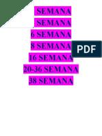 2 SEMANA.docx
