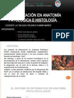 2.ANATOMIA HISTOLOGIA