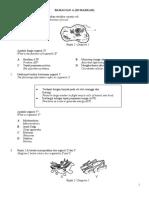 PEPERIKSAAN SUMATIF1BIOF42020