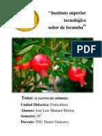 Cultivo del granado_ fruticultura.pdf