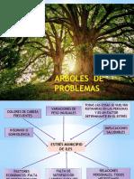arboles de APS.pptx