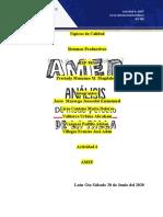 Actividad 6 AMEF final
