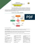 ACTIVIDAD 3 TERCER PERIODO CIENCIAS SOCIALES.pdf