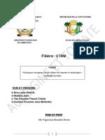 Exposer sur tomate et aubeigine (GROUPE 4).pdf