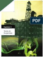 04 Teoría de las Surgencias.pdf