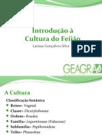 introduoculturadofeijo-larissa-161014021449.pdf