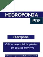 Aula4_Hidroponia1_2017(1).pdf